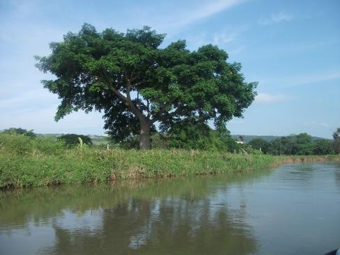 Medio Ambiente - Imagen pública