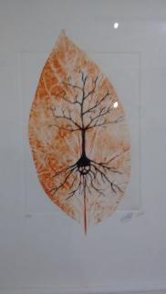 Un cuarto de gráfica - Exposición Colectivo AVE
