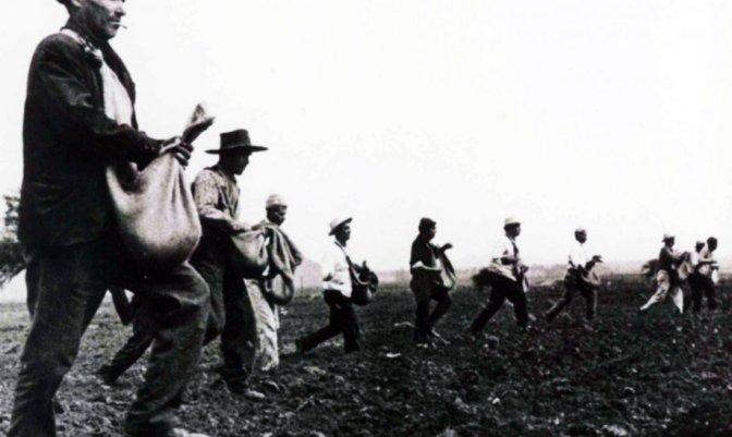 reforma-agraria