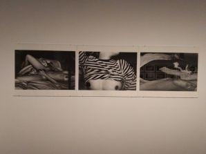 Estructuras de identidad, colección Walter - Fotografía por Job Melamed